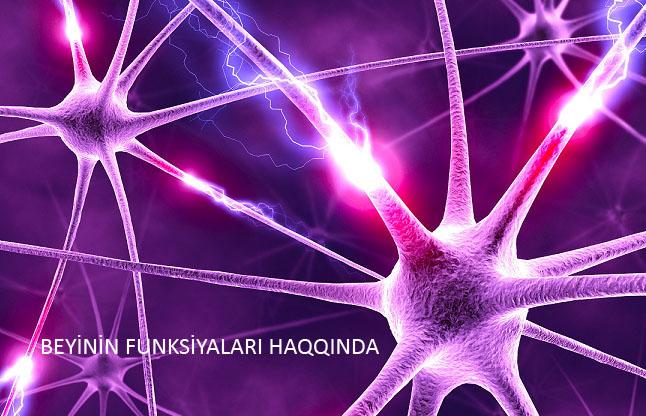 Beyin Funksiyalari