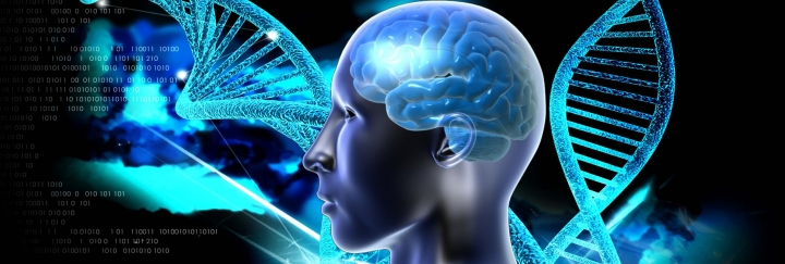 Faith is based on how the brain has been wired; it has to do with whether a certain section of the brain has been activated or not.