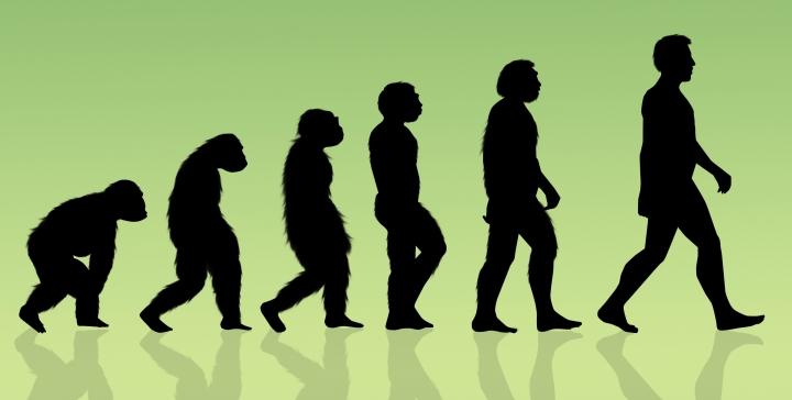 """İnsan bedeninde hayvanlığı yaşayan topluluklara, """"insansı"""" demekteyiz."""