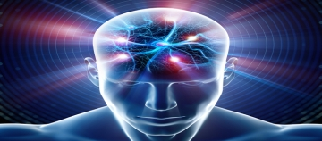 """""""Hareket eden hiçbir canlı yoktur ki onun 'B'nasiyesinde (alnında-beyninde var olarak/beyninden) tutmuş olmasın (Fâtır'ın beyni programlaması)..."""" (11:56)"""