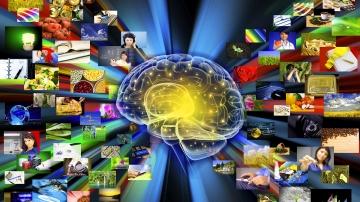 Alle elektromagnetischen Wellen, die zum Gehirn aufgrund der fünf Sinne kommen, werden gemäß der Datenbank ausgewertet.