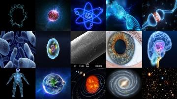 Im Körper eine Zelle; in der Galaxie ein Sonnensystem!