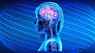 Die biologische Energie, die in spezifischen Hirnregionen  durch das Zikir produziert wurde, breitet sich auf andere Regionen aus und aktiviert brachliegende Zellen, wodurch die Hirnaktivität vermehrt wird.
