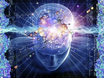 The brain is a data processing center. There is no vision or sound within the brain.