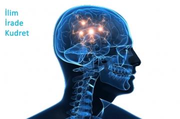İlim – irade – kudret cereyanı beyinde aynı anda oluşur ve her an tekrar eder.