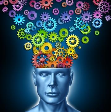 Beynimizden başlayıp, doğa kanunları denilen, bedenimizin ve bedenimizin devamı olan ruhumuzun tâbi olduğu kanunları ve çalışma sistemini tanımak...