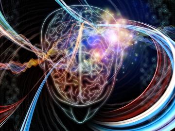 Beyin, her an Mutlak Tek Ben'in kendi boyutundan yansıyan frekansları değerlendirir.