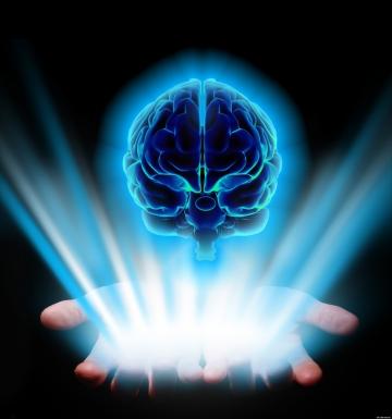 İnsan beyni, madde olarak algılanan yapıda ulaştığı en mükemmel yapıdır! Yeryüzünde ondan daha mükemmel ve muhteşem bir yapı yoktur!