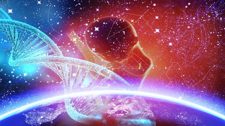 Cenin 120. güne ulaştığında henüz yeni oluşmaya başlayan beyin, ilk kozmik ışınsal tesirleri değerlendirebilecek düzeye ulaşır.