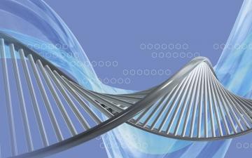 Haniflik genetik veritabanına sahip eşsiz Bilinç!