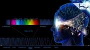5. Beş Duyunun Kesitsel Sınırları