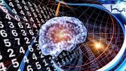 Beyin çalışma sistemi