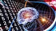04. Beyin Çalışma Sistemi