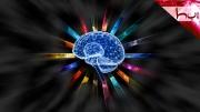 Bedenler Yaratan Beyin