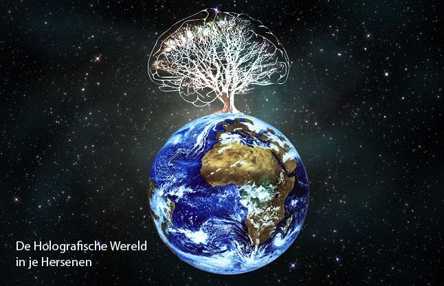 De Holografische Wereld in je Hersenen